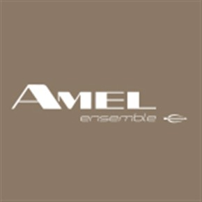 CHANTIERS AMEL S.A. logo