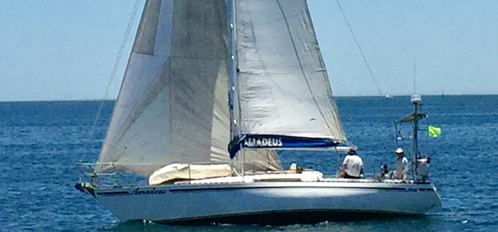 Buying A Sailboat – What Should I Choose?   TheYachtMarket