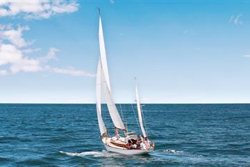 A Golden moment for Dorset Apprentices