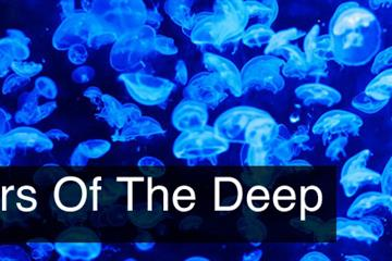 Dangers Of The Deep – Part 1