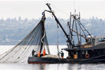 articles - buying a fishing boat