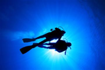 Diving – the Dangers and How You Could Help